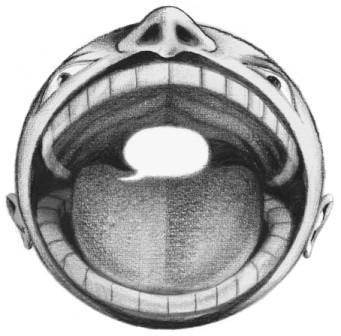 Copertina Spari d'Inchiostro